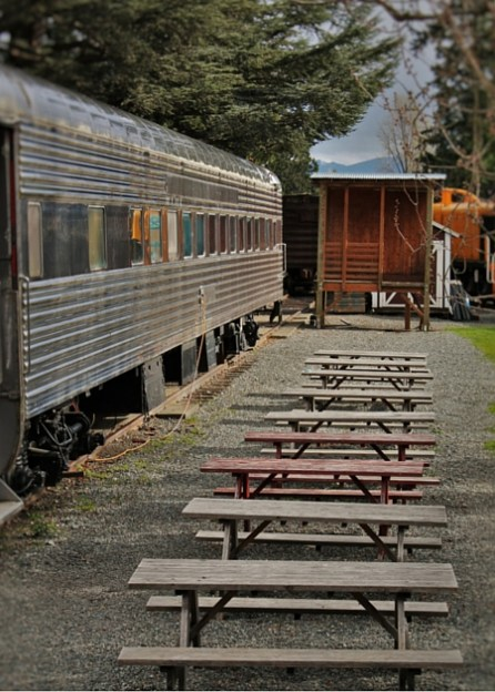Picnic Area at Old Snoqualmie Train Depot with Cherry Blossoms Washington 1