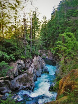 Upper Christine Falls in Mt Rainier National Park 2traveldads.com