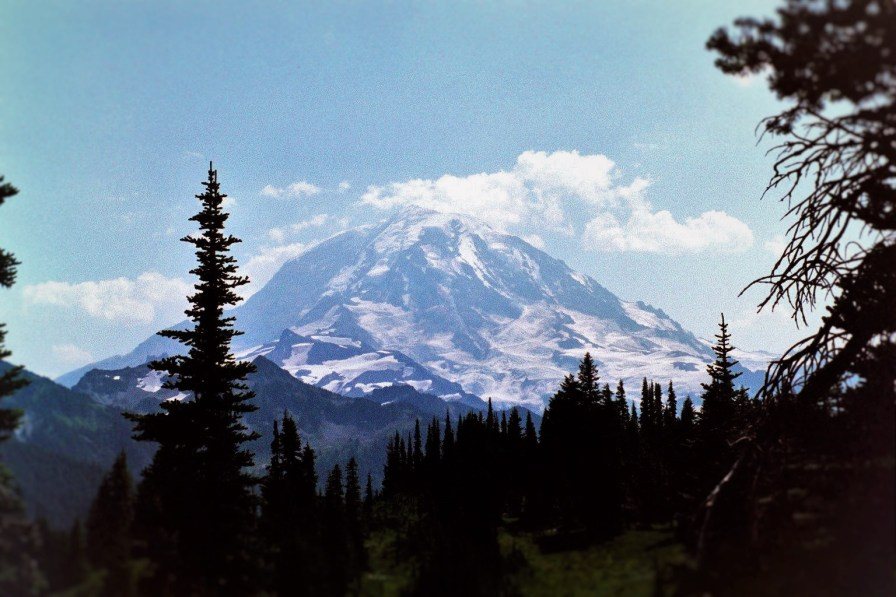 View from Lake Eunice Lookout in Mt Rainier National Park 1