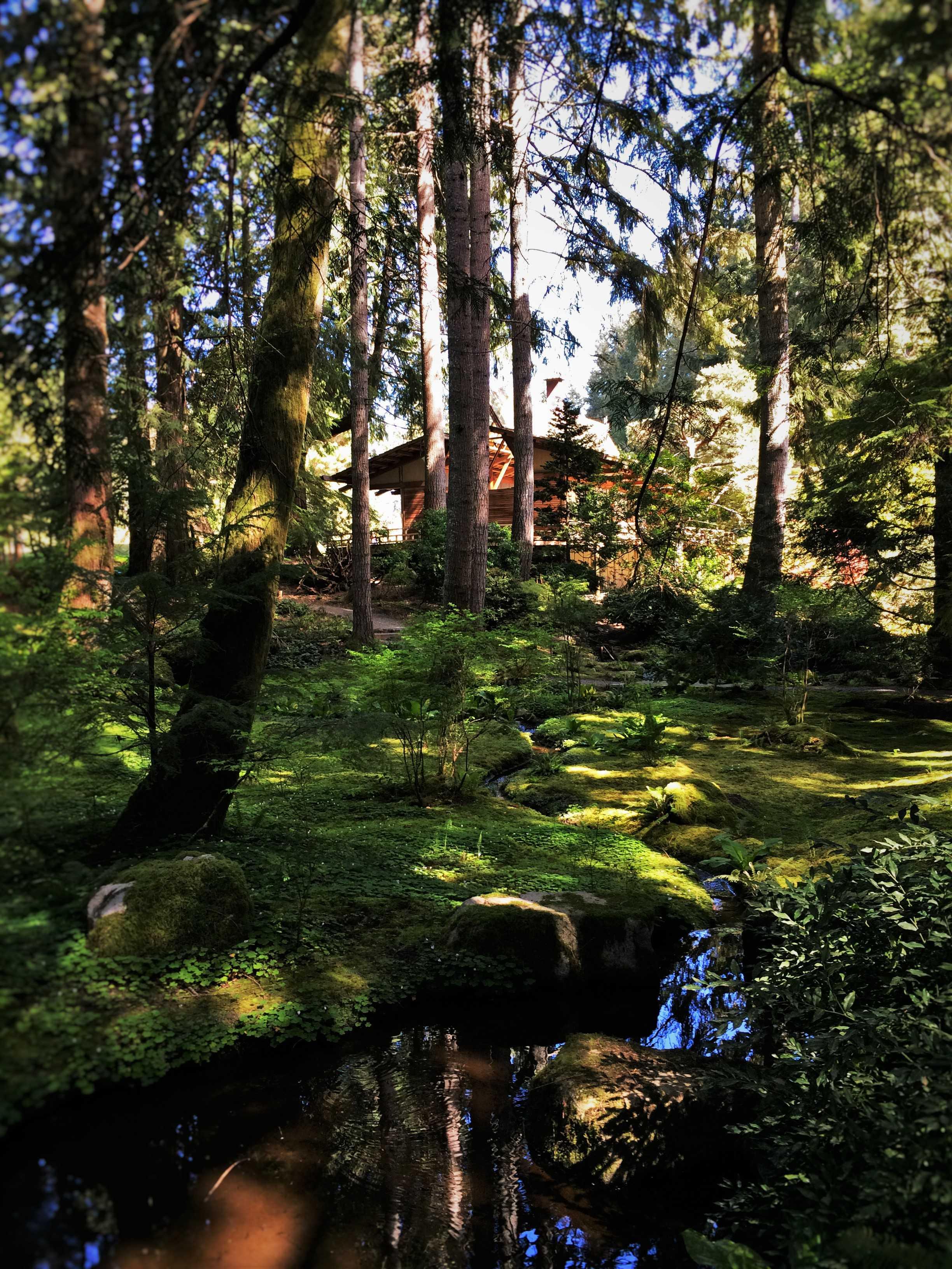 House and still water at Japanese Garden at Bloedel Reserve Bainbridge Island 1