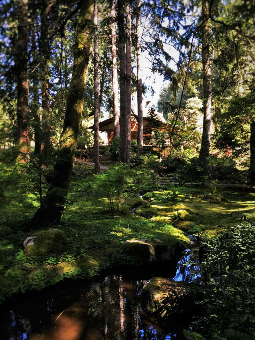 House and still water at Japanese Garden at Bloedel Reserve Bainbridge Island 1