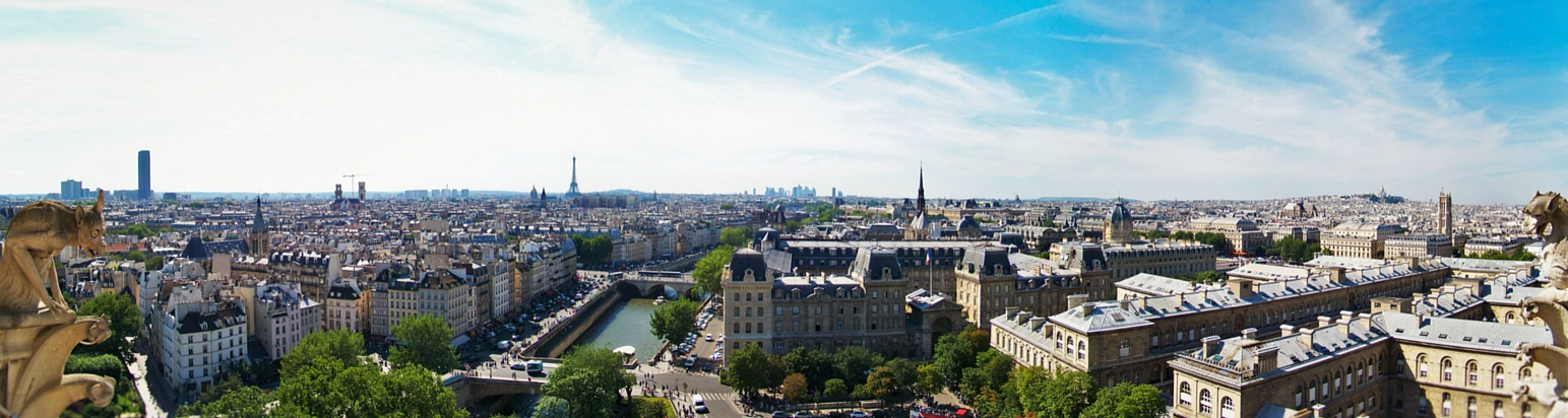 Paris Skyline from Notre Dame header