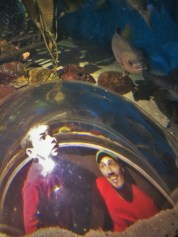 Rob Taylor and LittleMan in bubble glass at Denver Downtown Aquarium 1