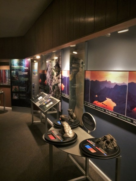 Animal Displays in Grant Village Visitors Center 1