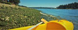 Kayak on Rich Passage Bainbridge Island header