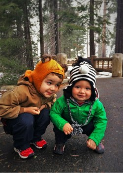 Taylor Kids and Giant Sequoias at General Sherman tree in Sequoia National Park with Kids 2traveldads.com (1)