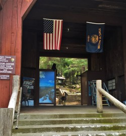 Deer at Visitors Center at Oregon Caves National Monument 2