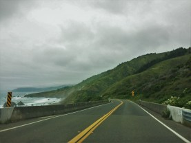 Redwood Highway along the coast