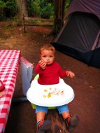 LittleMan Camping at Washington Park Anacortes 1