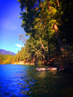 Cove on Lake Cushman Olympic Peninsula 2