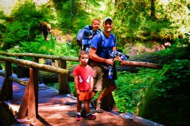 Rob Taylor and Kids hiking at Silver Falls Mt Rainier National Park 2