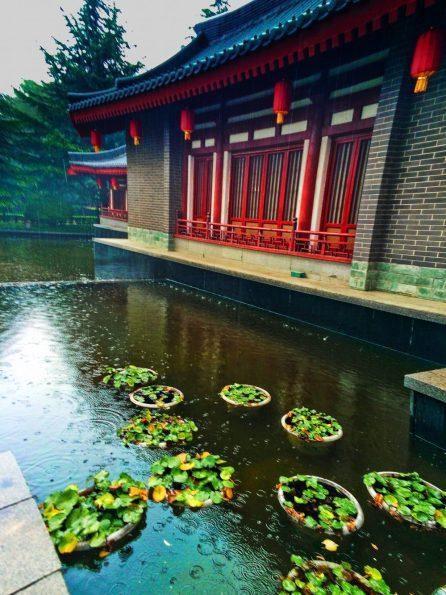 Reflections at Imperial Garden Xian Shaanxi 2