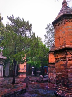 buddhist-temple-at-giant-wild-goose-pagoda-6
