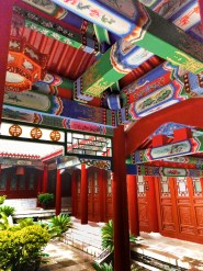 buddhist-temple-at-giant-wild-goose-pagoda-8