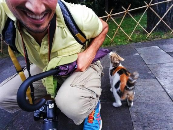 rob-taylor-and-stray-cat-at-giant-wild-goose-pagoda-3