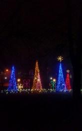 Christmas Trees at Lights of Life Marietta Georgia 3