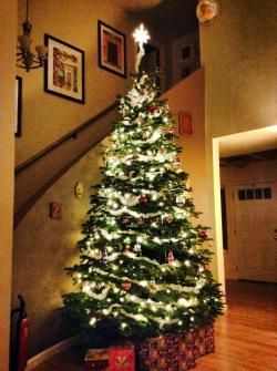 Decorated Taylor Family Christmas tree 2013