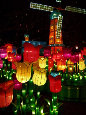 Dutch Windmill and Tulip Lanterns at Chinese Lantern Festival Atlanta 1