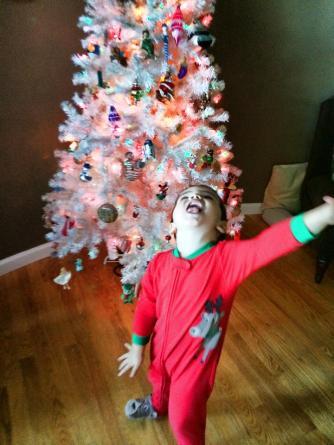 LittleMan and Taylor Family Christmas tree 2014