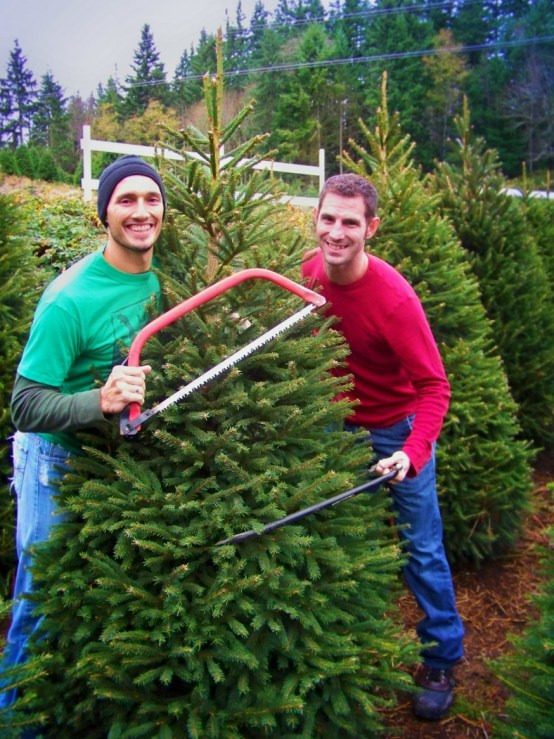 Taylor family getting tree from Christimas Tree farm. Sustainable, local business support.