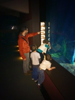 Taylor Family at River Monsters tank Tennessee Aquarium 1