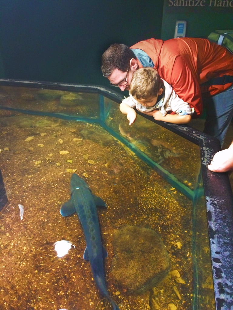 Taylor Family at Sturgeon Touch Tank Tennessee Aquarium 2