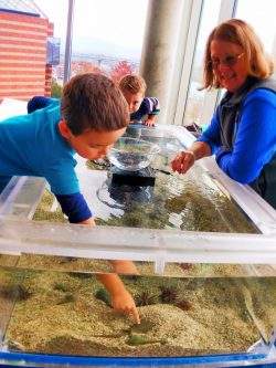 Taylor Kids at Touch Tank Tennessee Aquarium 1