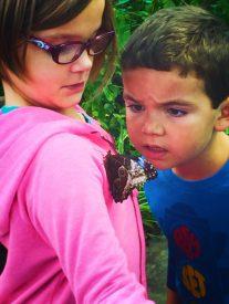 Taylor Kids in Butterfly Garden in Atrium at Tennessee Aquarium 2