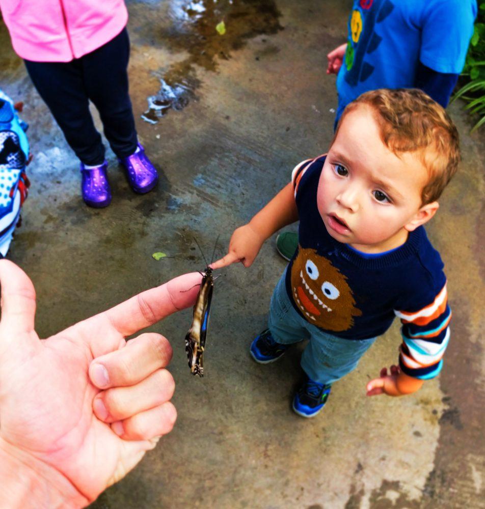 Taylor Kids in Butterfly Garden in Atrium at Tennessee Aquarium 3