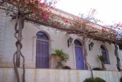 Blue doors and Bouganvilla in Todos Santos Baja California Sur 1