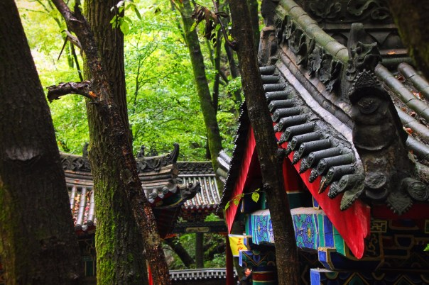 Buddhist Temples at Taibai Mountain National Park 2