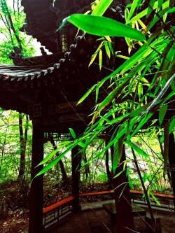 Buddhist Temples at Taibai Mountain National Park 6