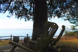 View of Dungeness Spit from Domaine Madeleine Port Angeles 2
