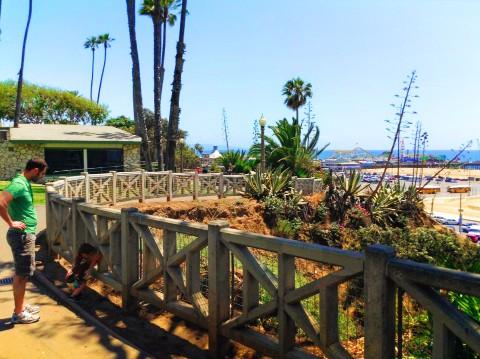 Taylor Family at Santa Monica Bluffs walk 03
