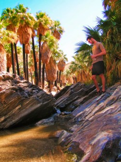 Chris Taylor hiking at Indian Canyons at Agua Caliente Palm Springs 3