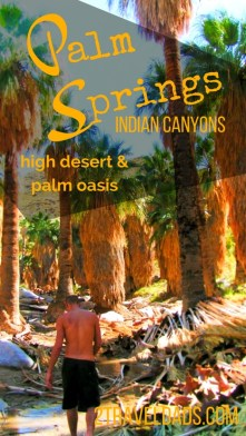 Palm Springs is a destination for relaxing and getting guaranteed sun, but hiking Palm Springs is the real getaway. The high desert and palm oasis are amazing and the most exciting part of the SoCal trip. 2traveldads.com