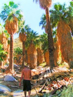 Rob Taylor hiking at Indian Canyons at Aguas Calientes Palm Springs 1