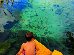 Taylor Family at Rainbow Springs Florida State Park 2