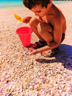 Taylor Family beachcombing at Bradenton Beach Manatee County Florida 1