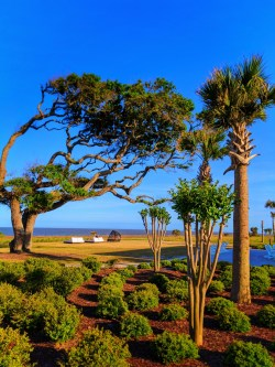 Beach grounds at Holiday Inn Resort Jekyll Island Golden Isles Georgia 1
