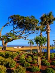 Beach grounds at Holiday Inn Resort Jekyll Island Golden Isles Georgia 1