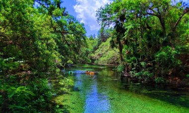 Crystal clear water at Blue Spring State Park Daytona Beach 11