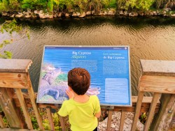 Taylor Family and Alligator Signage at Big Cypress National Preserve 1