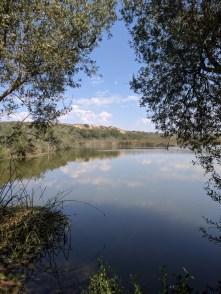 Pond at Oso Flaco State Park Santa Maria Valley