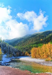 Fall colors and snow on Flathead River Flathead National Forest Montana 9