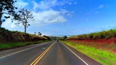 Driving the Kamehameha Highway in Alamo Jeep on North Shore Oahu 1