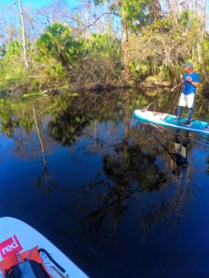 Paddleboarding Blue Spring State Park Paddleboard Orlando 3