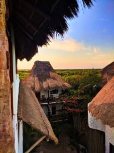 Mangrove forest from Villas Flamingos Isla Holbox Yucatan Yoga Retreat 1