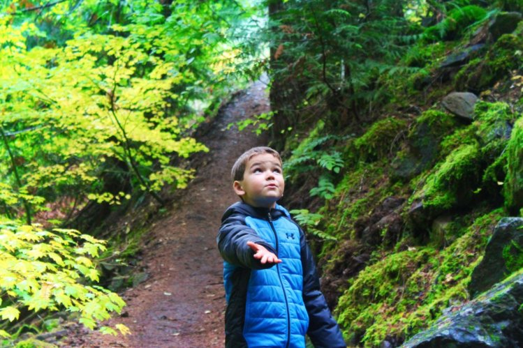 Taylor Family hiking at Panther Creek Falls Columbia Gorge 2