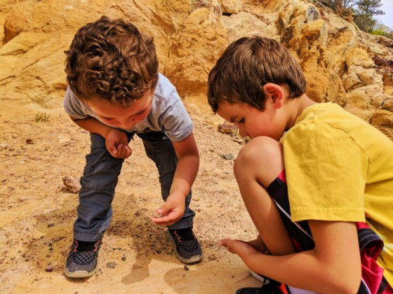 Taylor Family looking for fossils at Dinosaur Ridge Morrison Denver Colorado 3
